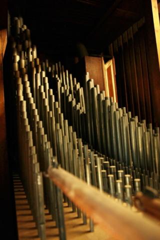 ArnhemWalburgis-orgel29