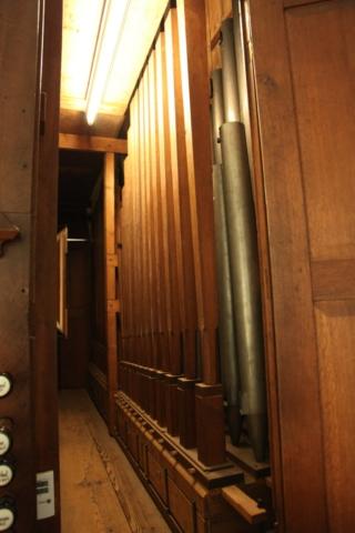 ArnhemWalburgis-orgel32