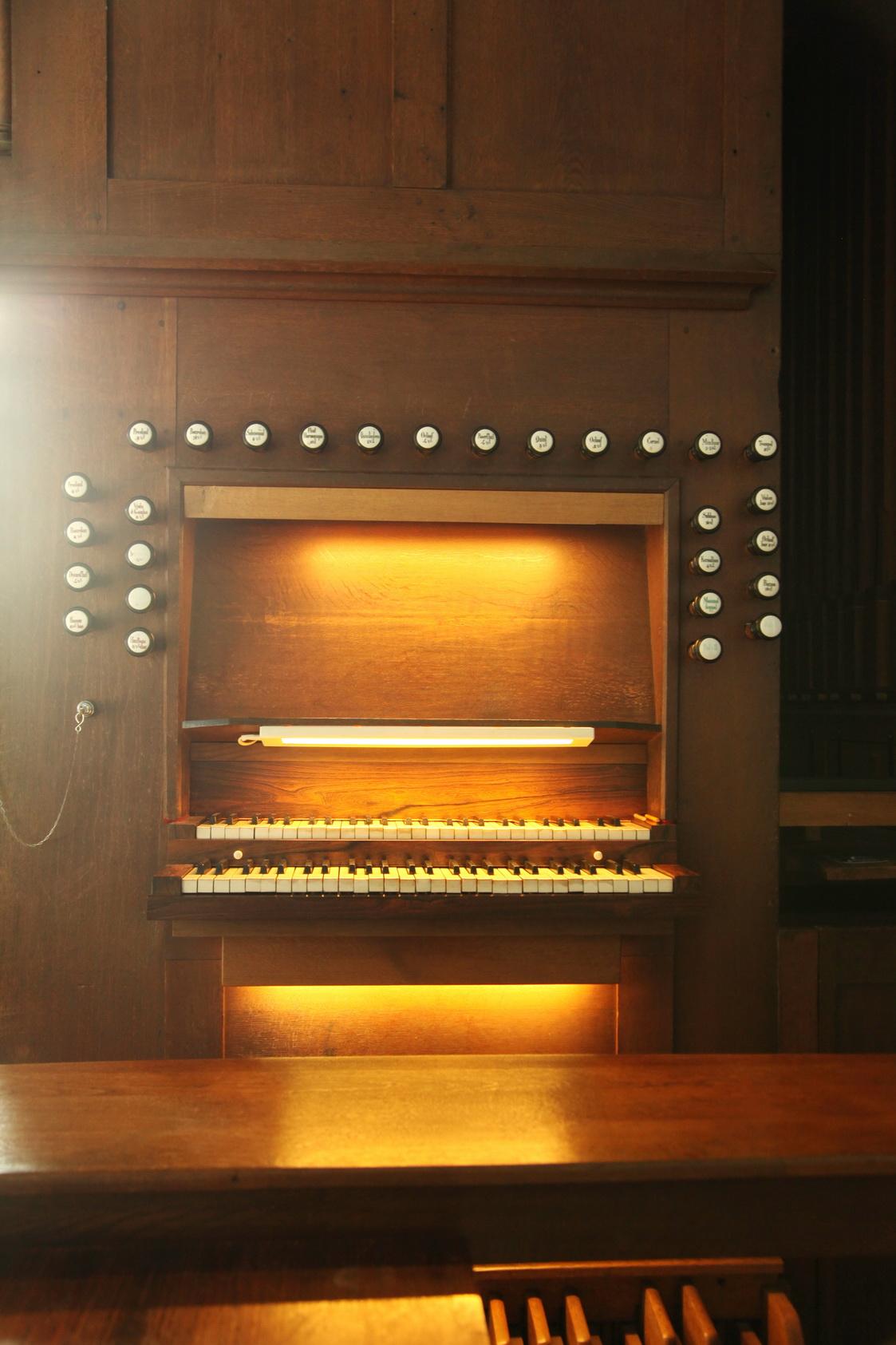 ArnhemWalburgis-orgel42